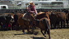 HaileyWilburCHSRA2016girlscuttingRodeo