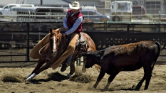 GeorgeBeckerCHSRA2016boyscuttingRodeo