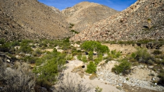 Sheep Canyon Anza Borrego Desert 2015