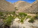 Sheep Canyon Anza Borrego Desert 2015