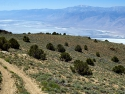 Road near Burgess Mining shack, looking out over Owens Lake