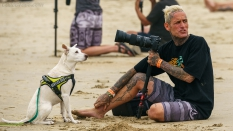 Spectator and his dog US Open of surfing 2019